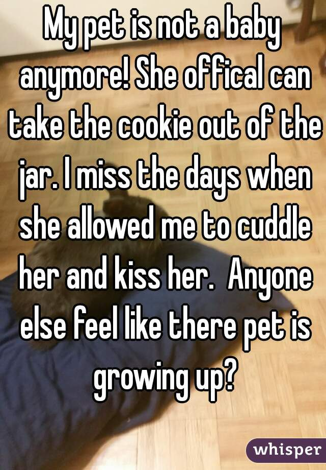My pet is not a baby anymore! She offical can take the cookie out of the jar. I miss the days when she allowed me to cuddle her and kiss her.  Anyone else feel like there pet is growing up?
