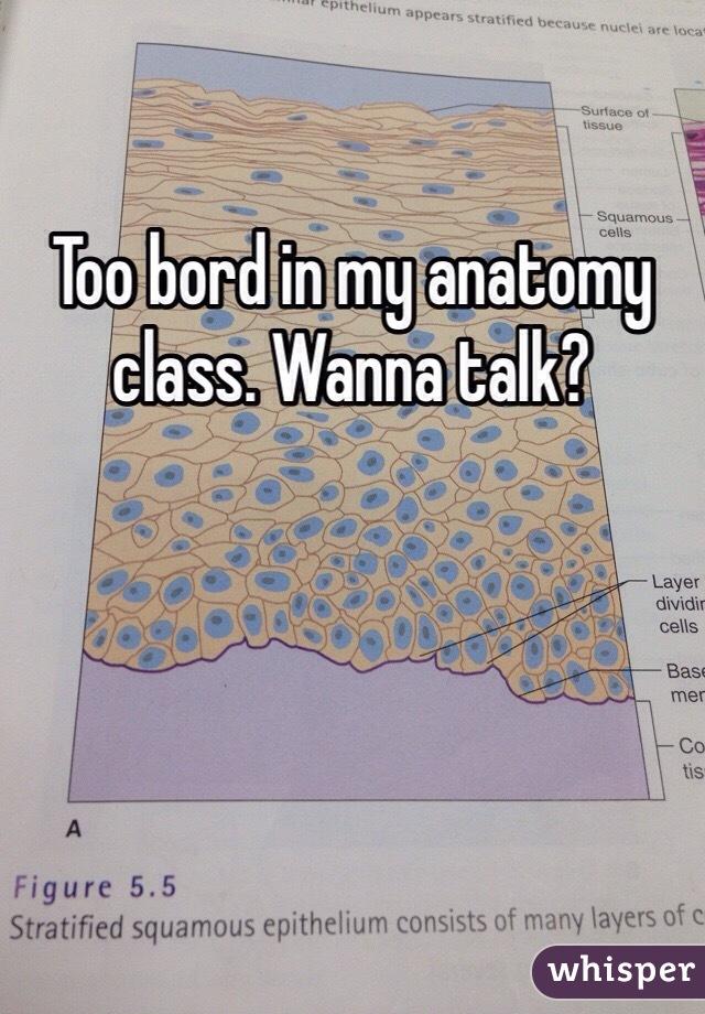 Too bord in my anatomy class. Wanna talk?