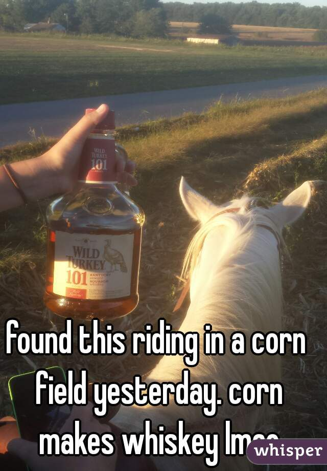 found this riding in a corn field yesterday. corn makes whiskey lmao