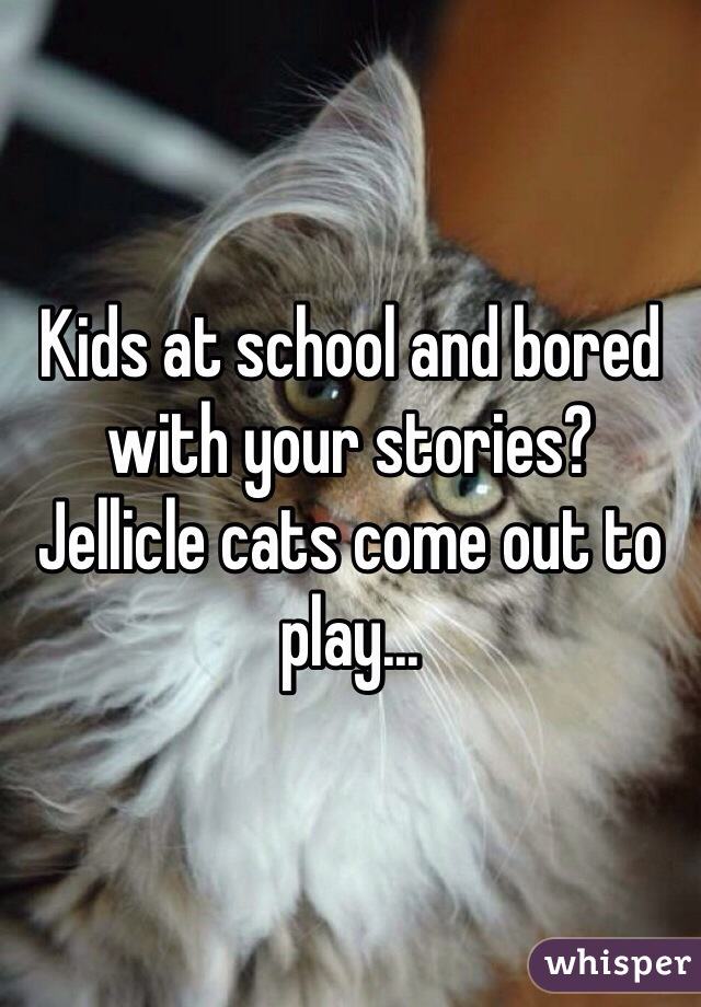 Kids at school and bored with your stories? Jellicle cats come out to play...