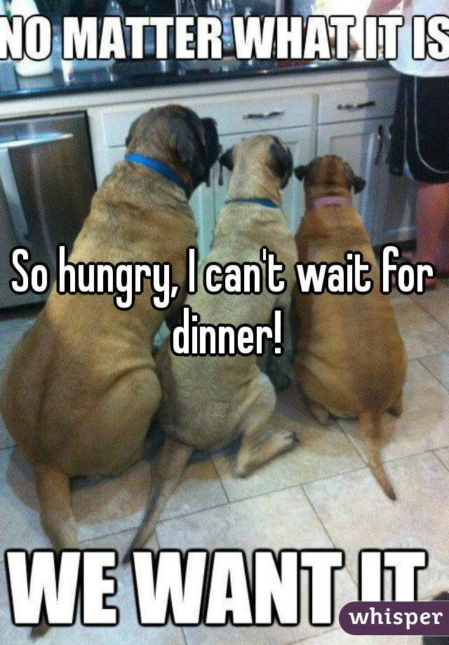 So hungry, I can't wait for dinner!