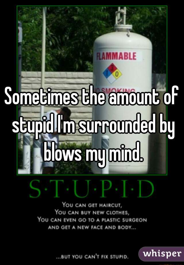 Sometimes the amount of stupid I'm surrounded by blows my mind.