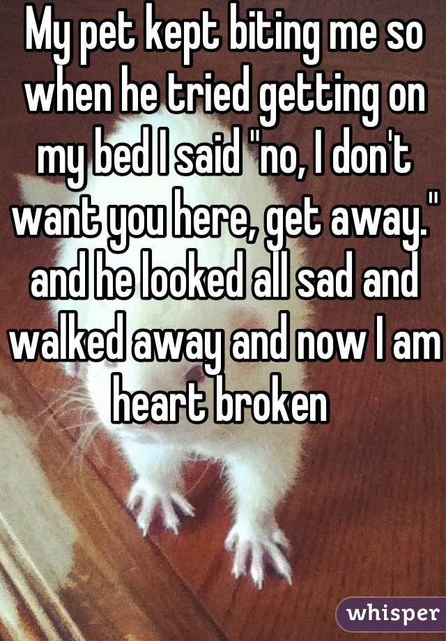 """My pet kept biting me so when he tried getting on my bed I said """"no, I don't want you here, get away."""" and he looked all sad and walked away and now I am heart broken"""