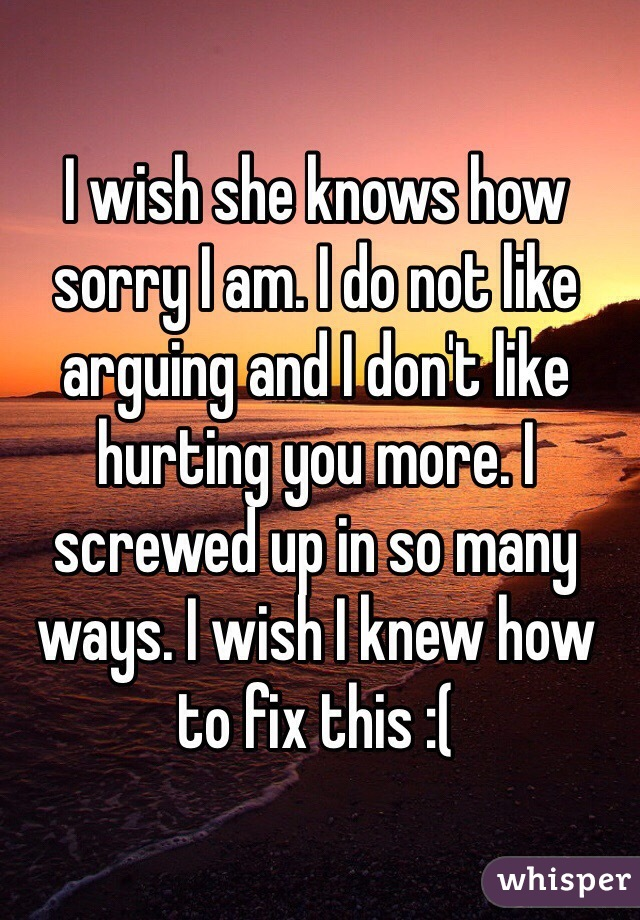 I wish she knows how sorry I am. I do not like arguing and I don't like hurting you more. I screwed up in so many ways. I wish I knew how to fix this :(