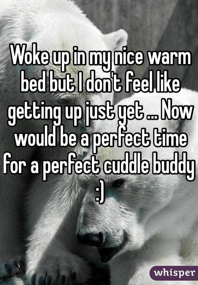 Woke up in my nice warm bed but I don't feel like getting up just yet ... Now would be a perfect time for a perfect cuddle buddy :)