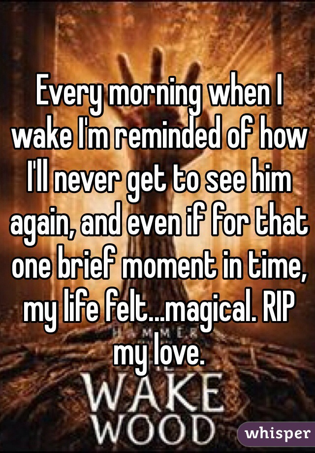 Every morning when I wake I'm reminded of how I'll never get to see him again, and even if for that one brief moment in time, my life felt...magical. RIP my love.
