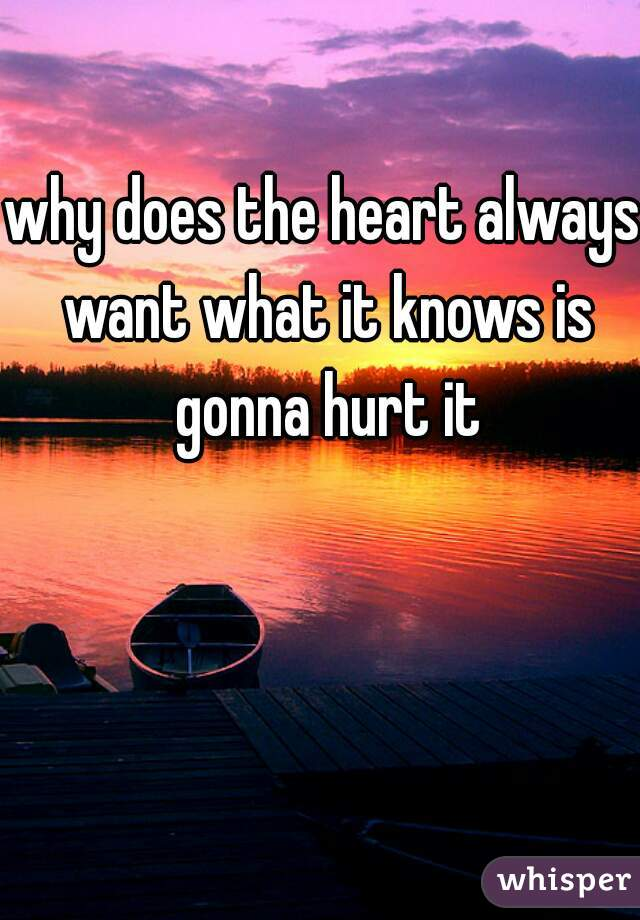 why does the heart always want what it knows is gonna hurt it