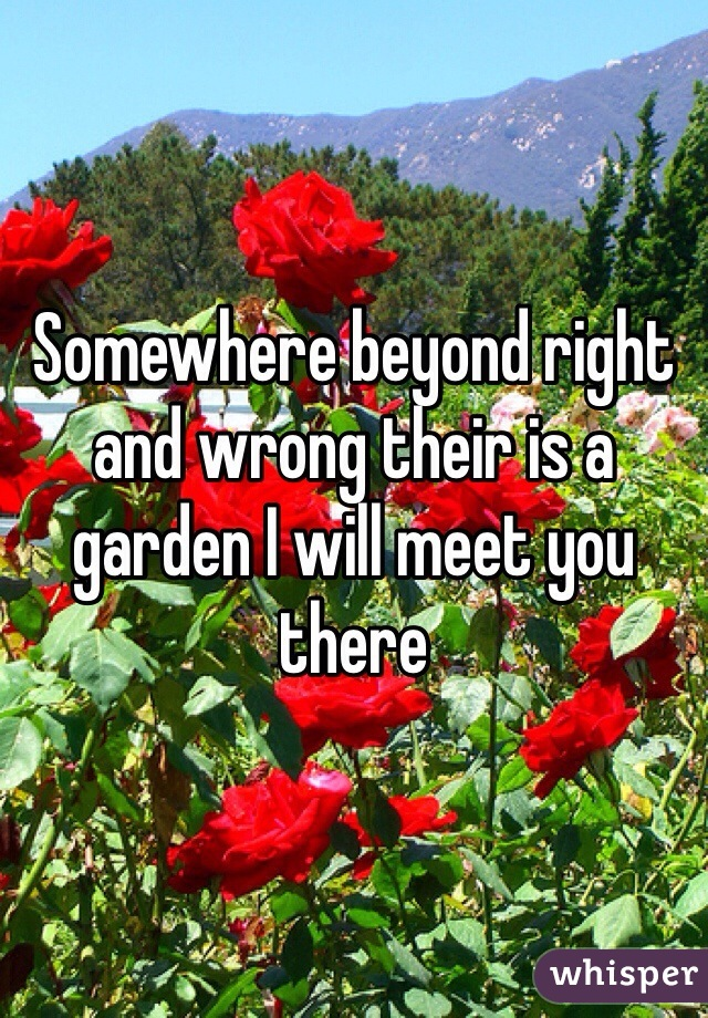 Somewhere beyond right and wrong their is a garden I will meet you there