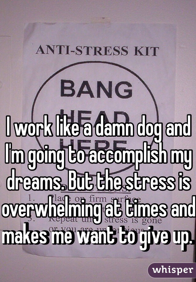 I work like a damn dog and I'm going to accomplish my dreams. But the stress is overwhelming at times and makes me want to give up.