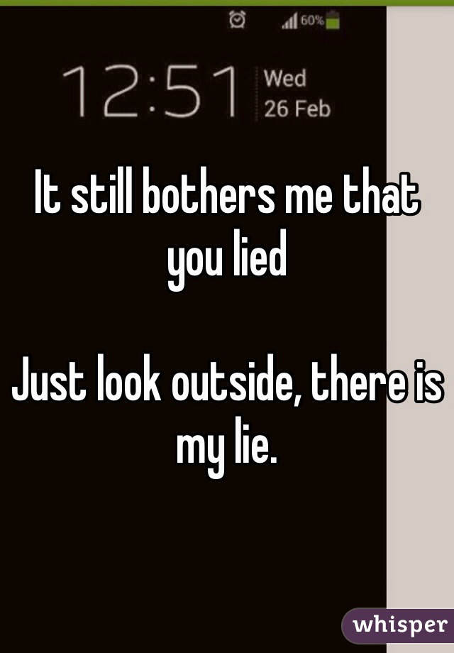 It still bothers me that you lied  Just look outside, there is my lie.