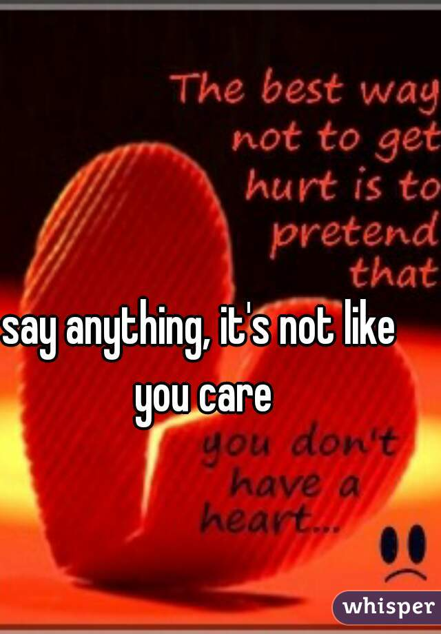 say anything, it's not like you care