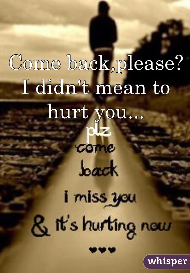 Come back,please? I didn't mean to hurt you...