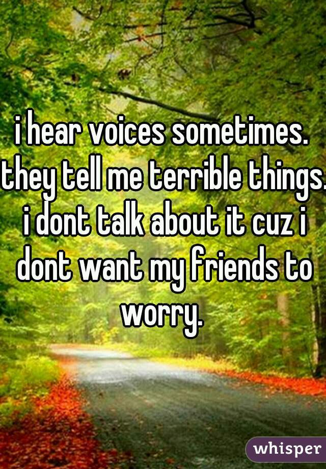 i hear voices sometimes. they tell me terrible things. i dont talk about it cuz i dont want my friends to worry.