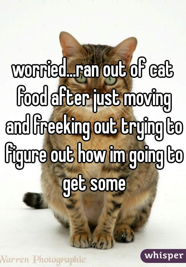 worried...ran out of cat food after just moving and freeking out trying to figure out how im going to get some