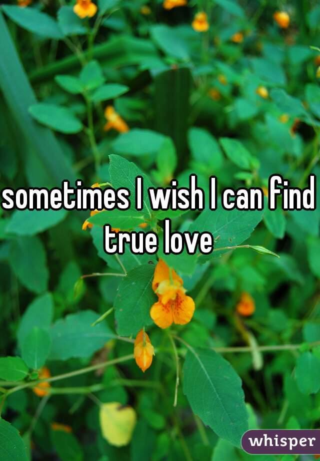 sometimes I wish I can find true love