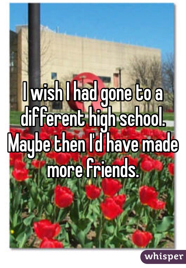 I wish I had gone to a different high school. Maybe then I'd have made more friends.