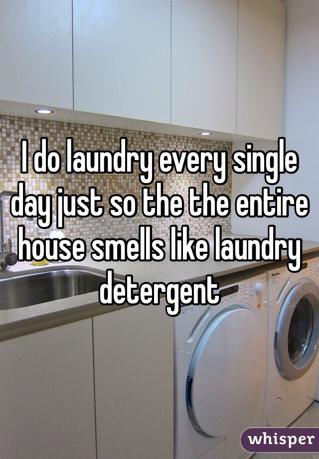 I do laundry every single day just so the the entire house smells like laundry detergent