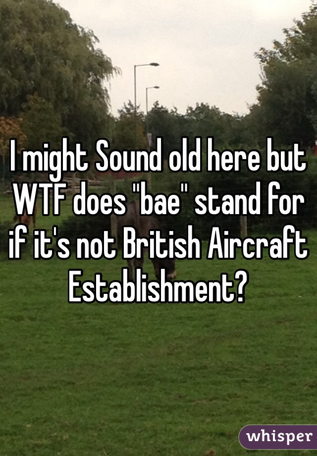 "I might Sound old here but WTF does ""bae"" stand for if it's not British Aircraft Establishment?"