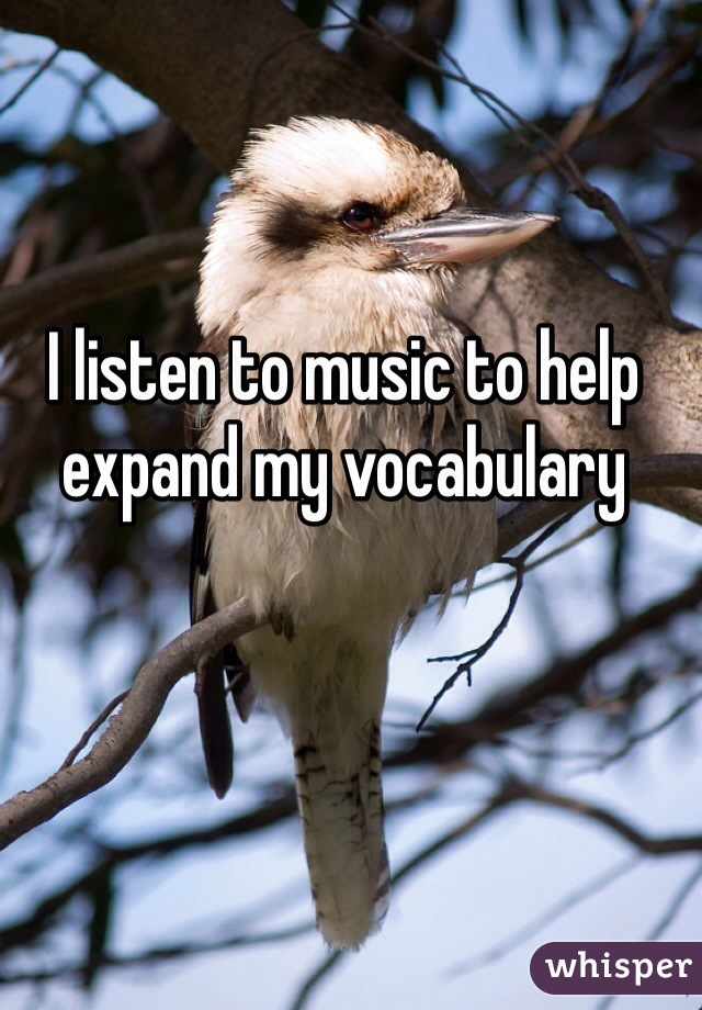 I listen to music to help expand my vocabulary