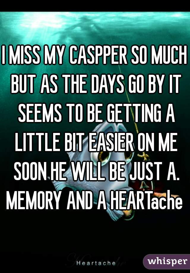 I MISS MY CASPPER SO MUCH BUT AS THE DAYS GO BY IT SEEMS TO BE GETTING A LITTLE BIT EASIER ON ME SOON HE WILL BE JUST A. MEMORY AND A HEARTache