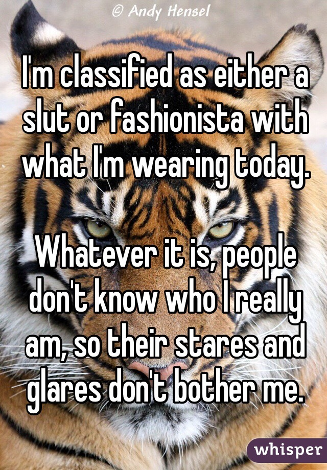 I'm classified as either a slut or fashionista with what I'm wearing today.   Whatever it is, people don't know who I really am, so their stares and glares don't bother me.