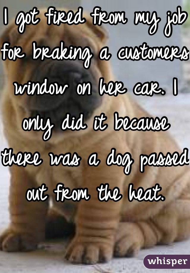 I got fired from my job for braking a customers window on her car. I only did it because there was a dog passed out from the heat.