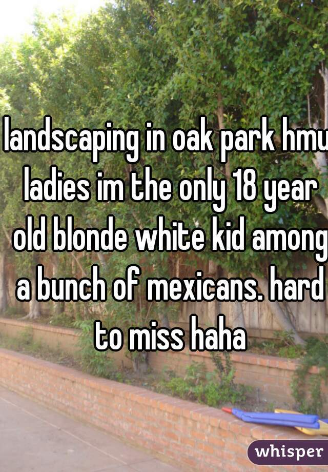 landscaping in oak park hmu ladies im the only 18 year old blonde white kid among a bunch of mexicans. hard to miss haha