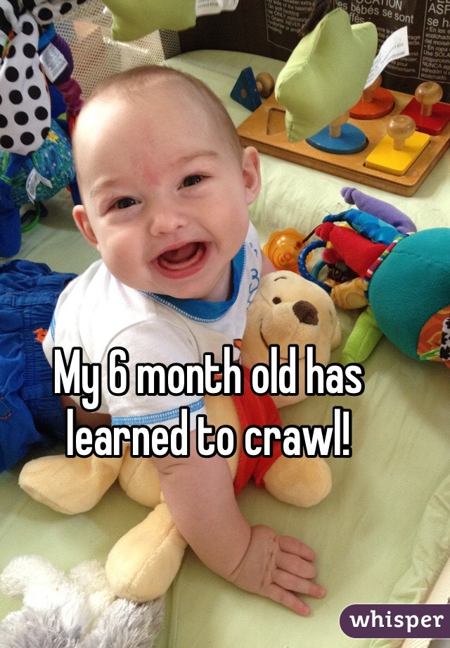 My 6 month old has learned to crawl!