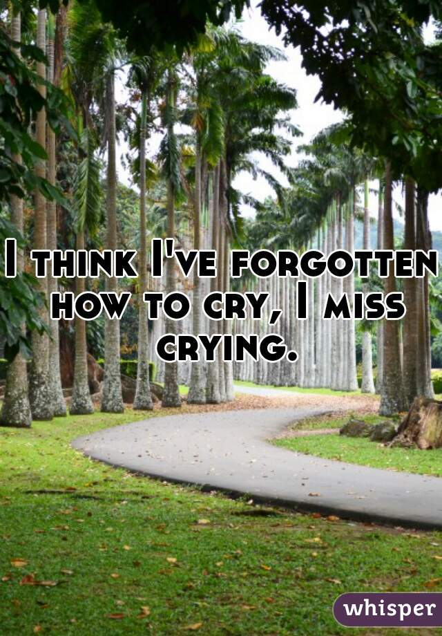 I think I've forgotten how to cry, I miss crying.
