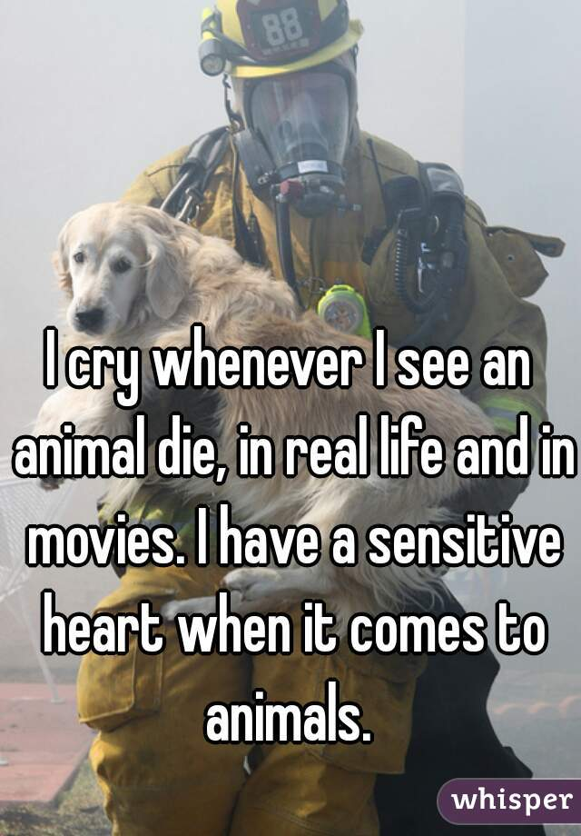 I cry whenever I see an animal die, in real life and in movies. I have a sensitive heart when it comes to animals.