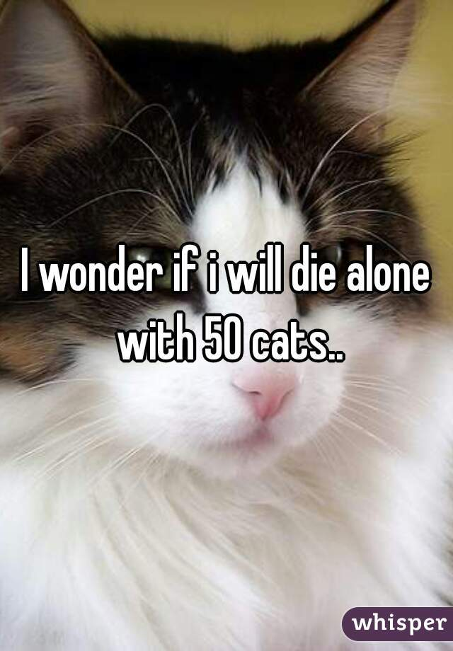I wonder if i will die alone with 50 cats..