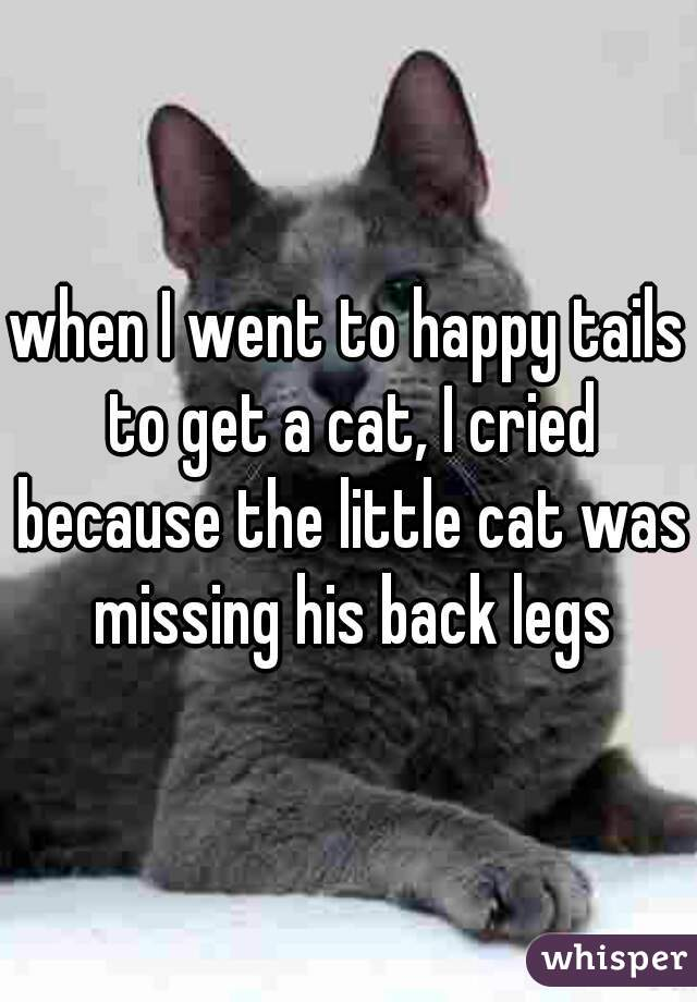 when I went to happy tails to get a cat, I cried because the little cat was missing his back legs