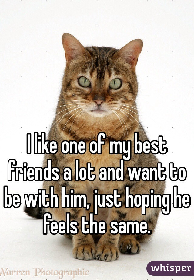 I like one of my best friends a lot and want to be with him, just hoping he feels the same.