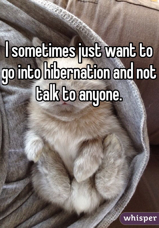 I sometimes just want to go into hibernation and not talk to anyone.