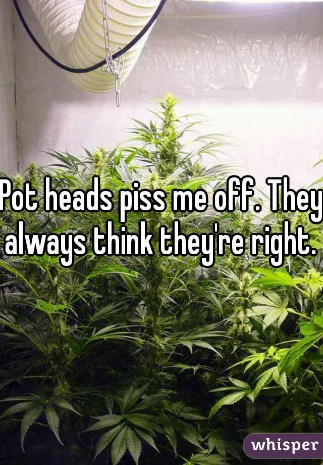 Pot heads piss me off. They always think they're right.