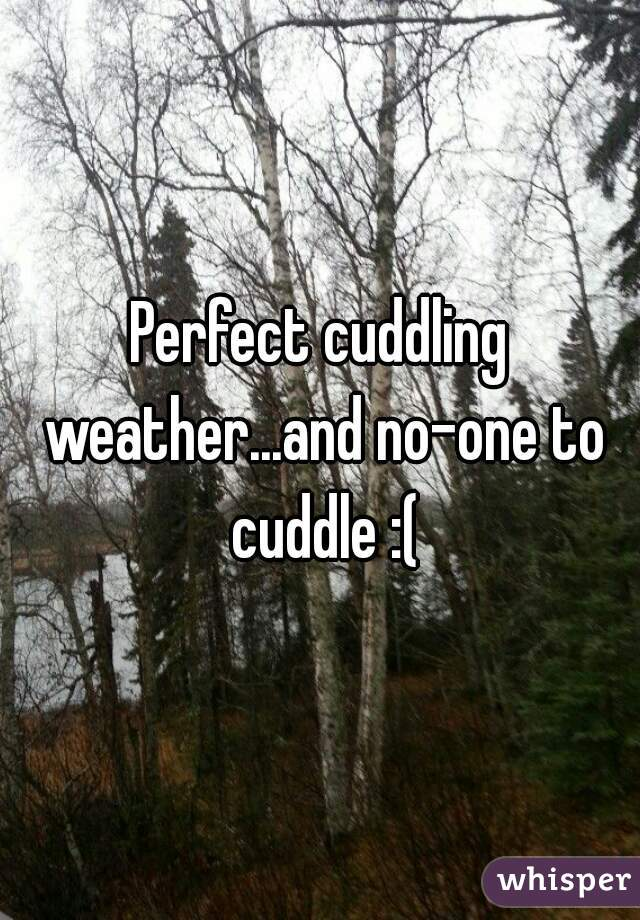 Perfect cuddling weather...and no-one to cuddle :(