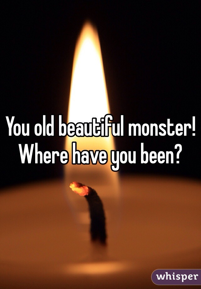You old beautiful monster! Where have you been?