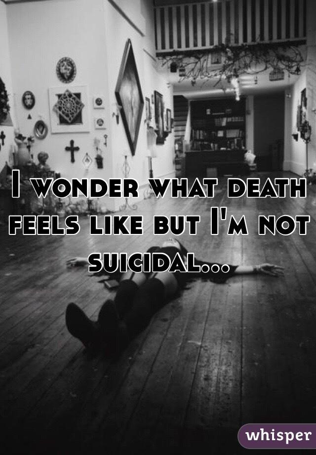 I wonder what death feels like but I'm not suicidal...