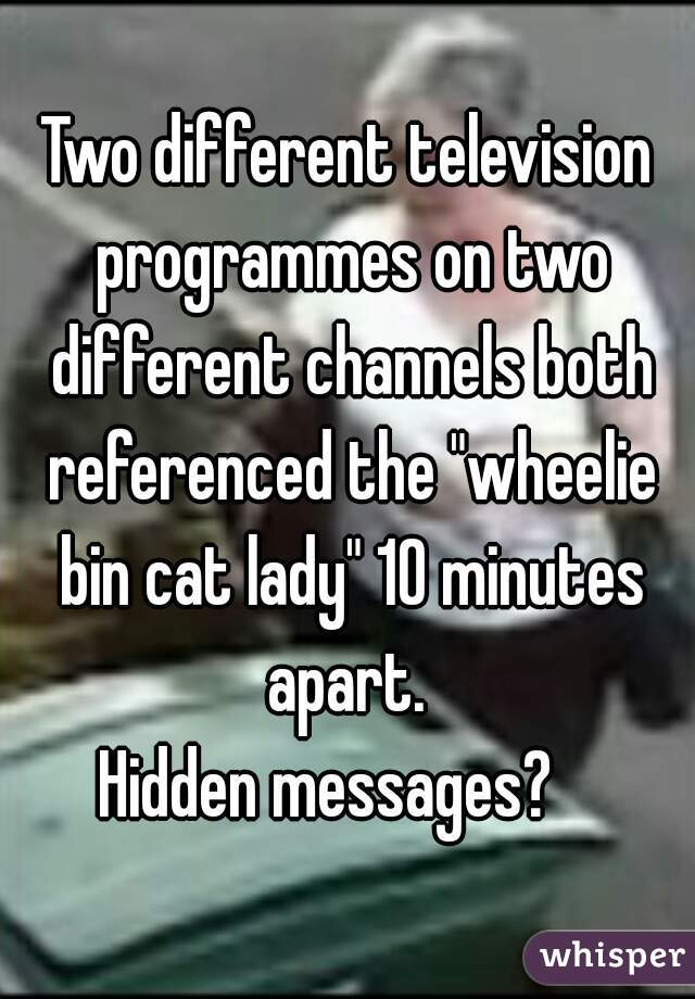 """Two different television programmes on two different channels both referenced the """"wheelie bin cat lady"""" 10 minutes apart.  Hidden messages?"""