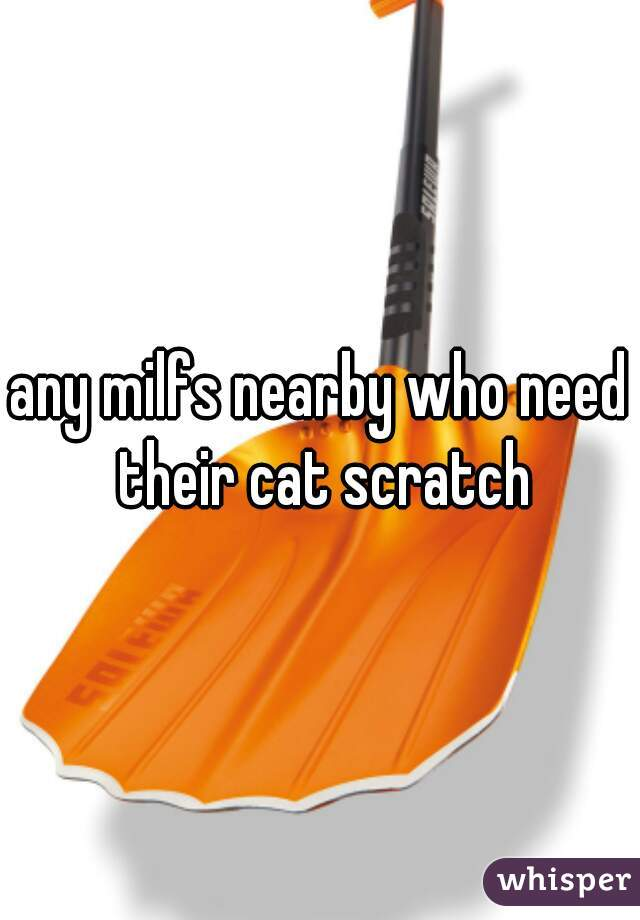 any milfs nearby who need their cat scratch