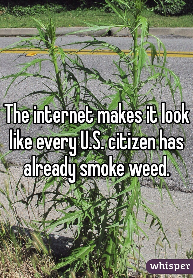The internet makes it look like every U.S. citizen has already smoke weed.
