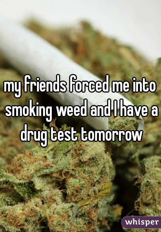 my friends forced me into smoking weed and I have a drug test tomorrow