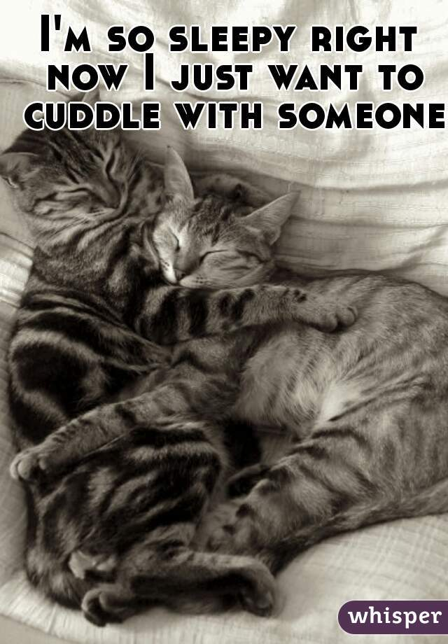 I'm so sleepy right now I just want to cuddle with someone.