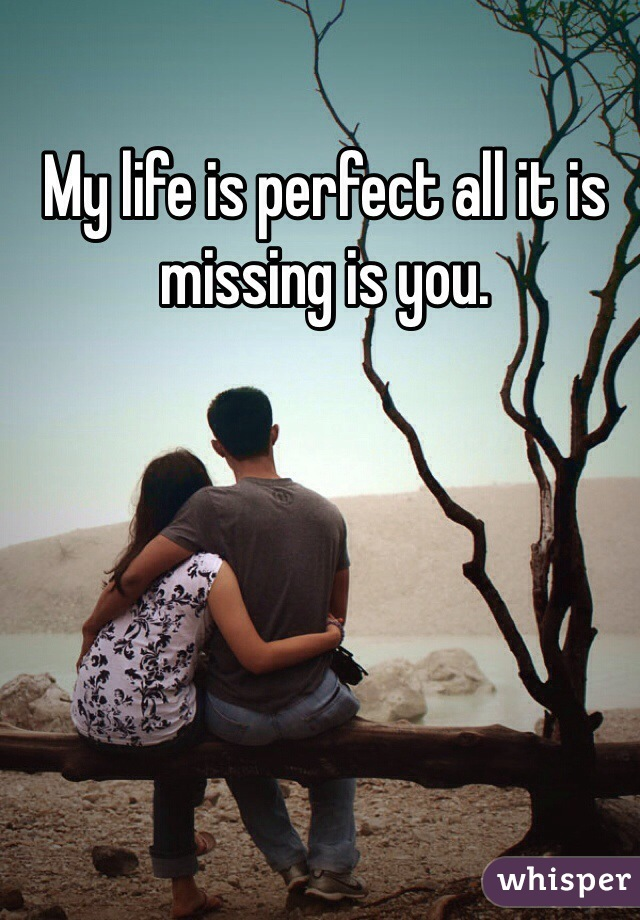 My life is perfect all it is missing is you.