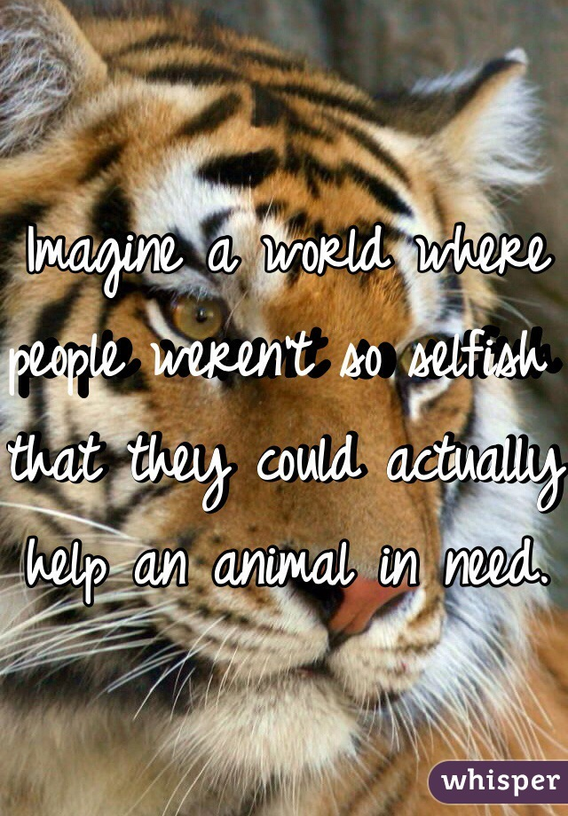 Imagine a world where people weren't so selfish that they could actually help an animal in need.