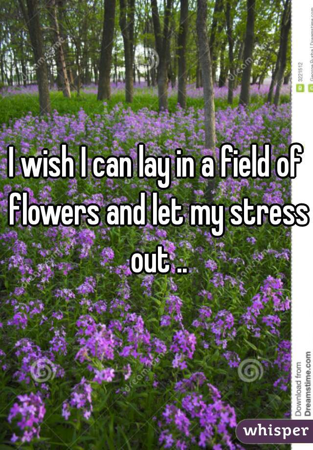 I wish I can lay in a field of flowers and let my stress out ..