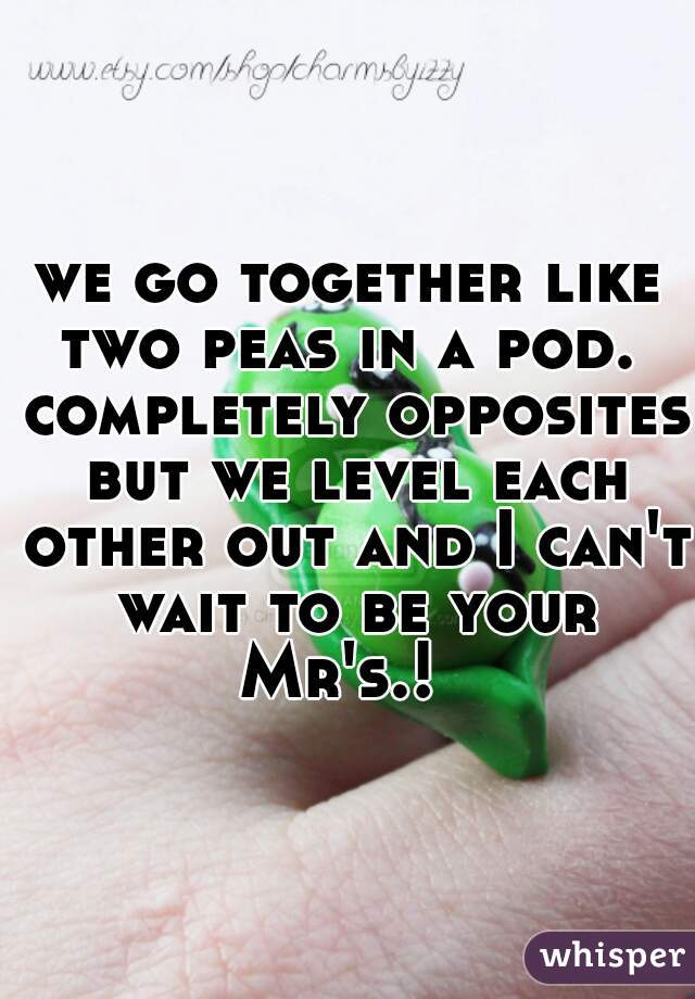 we go together like two peas in a pod.  completely opposites but we level each other out and I can't wait to be your Mr's.!