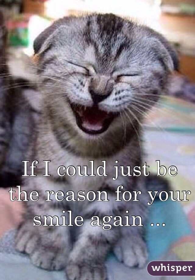 If I could just be the reason for your smile again ...