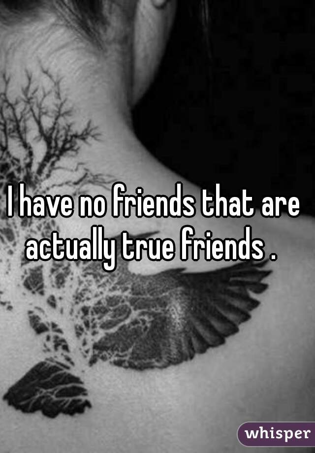 I have no friends that are actually true friends .