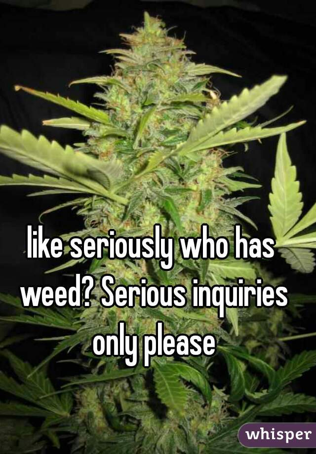 like seriously who has weed? Serious inquiries only please